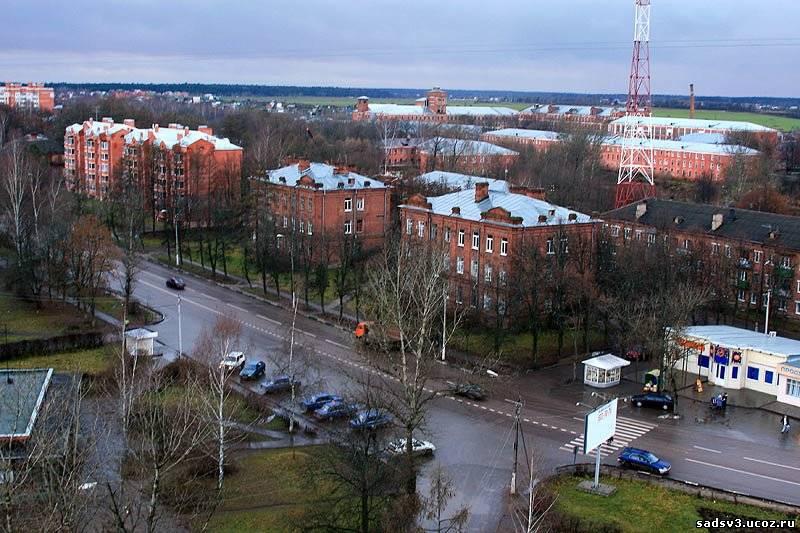 красноармейск московская область фото возрасте накачала огромную